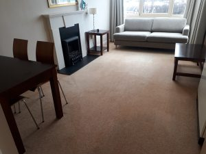 cleaned sittingroom carpet